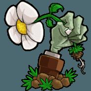 植物大战僵尸gthr版