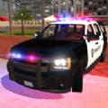 美国警察Suv驾驶